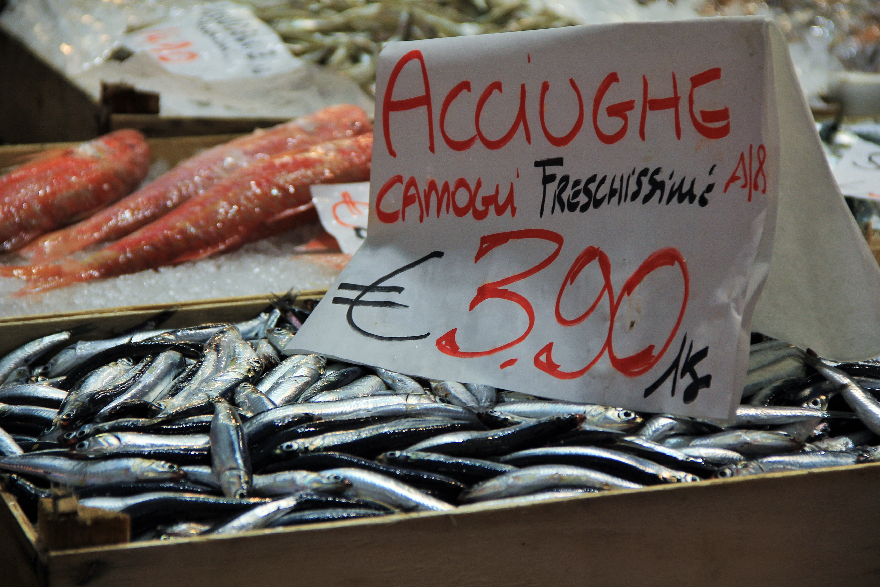 sardine at Genova market