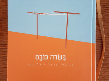 Publication in a new book, reflections on the Israeli laundry line