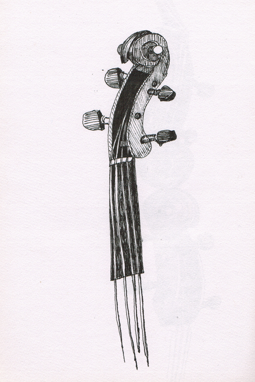 String Instruments | כינורות
