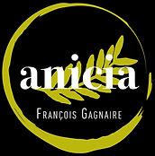 LOGO Anicia FG 2020 - fond noir.jpg