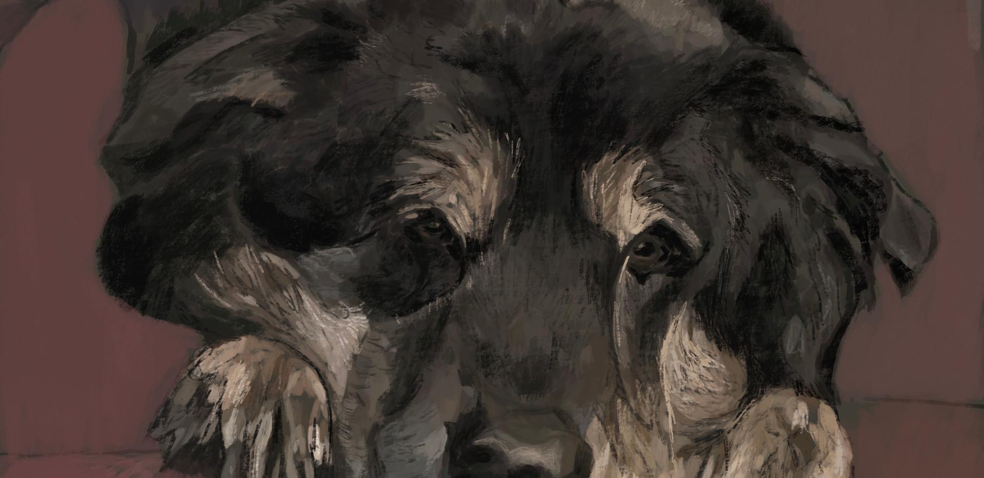 Dog-Rowdy (SOLD)
