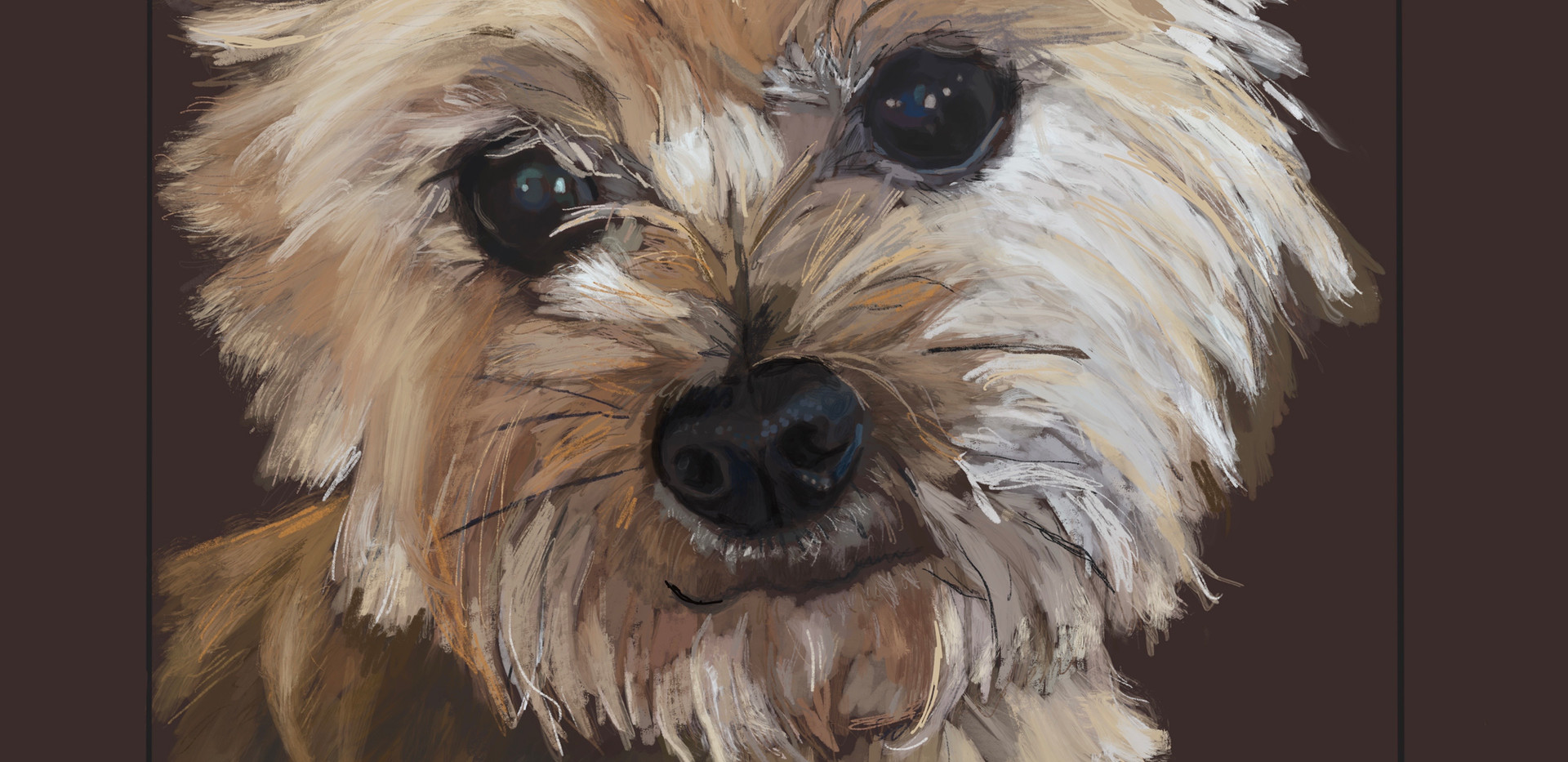 Dog- Triscuit