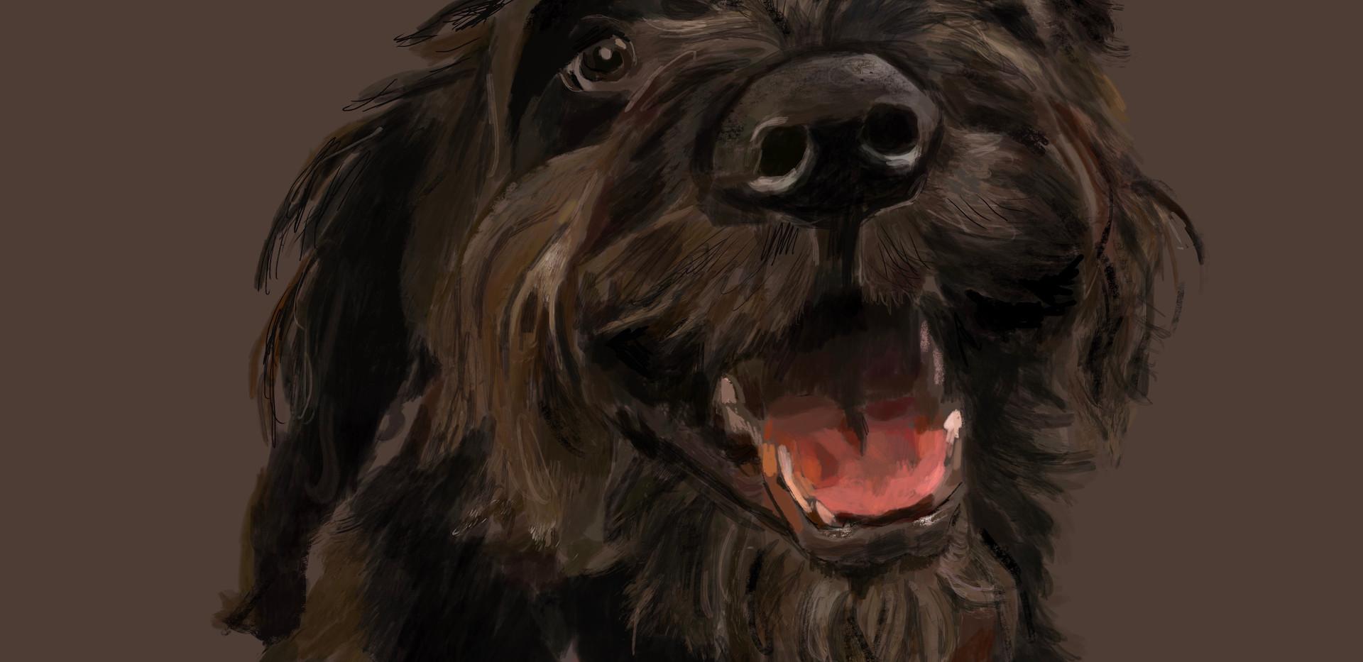 Dog-Zep (SOLD)