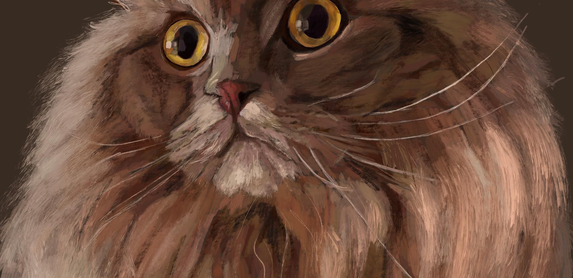 Cat-Holden (SOLD)