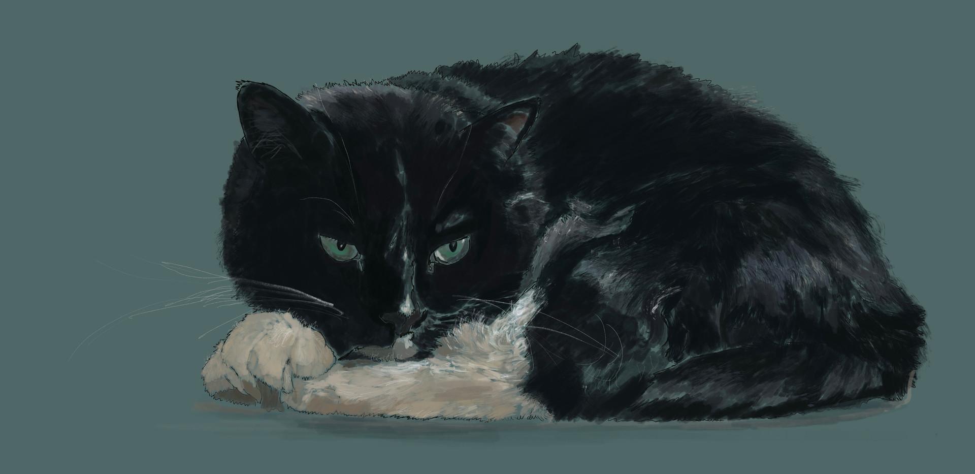 Cat Teddy (SOLD)