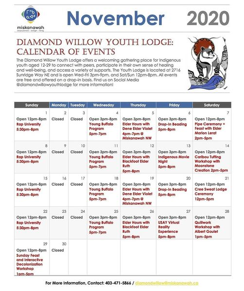 Diamond Willow November calendar