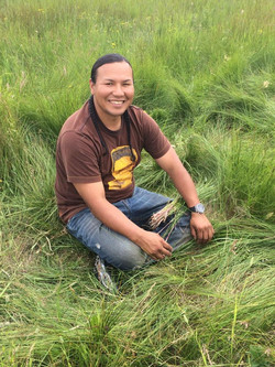 Sweetgrass Picking
