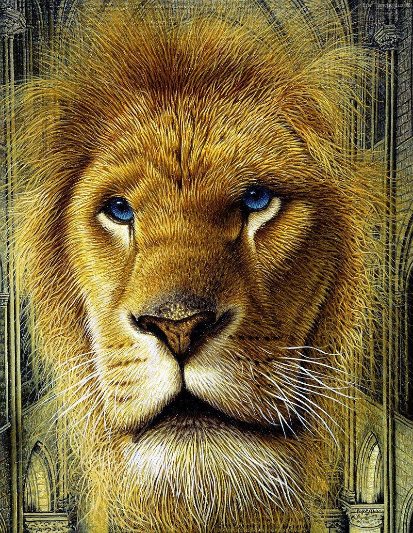 VISION OF LION