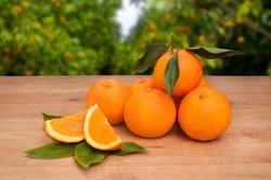 naranjas-españa