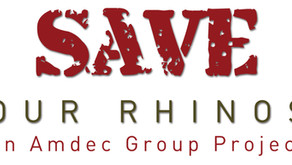 Save Our Rhinos Foundation
