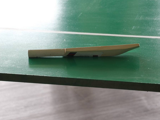 St Joseph's Special School Table Cricket Handover