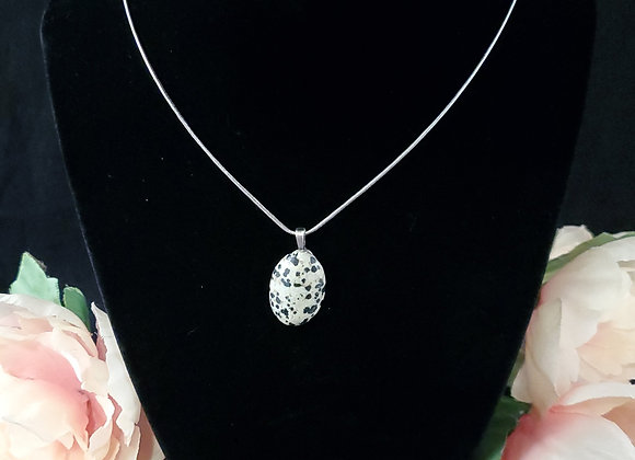 Polished Rock Necklace-Dalmatian  Stone
