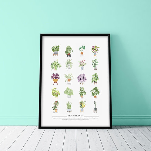 WATERCOLOR HOUSEPLANTS POSTER