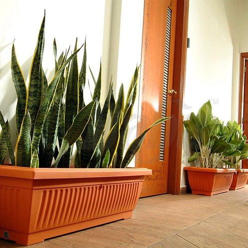XXL RECTANGULAR PLANTER
