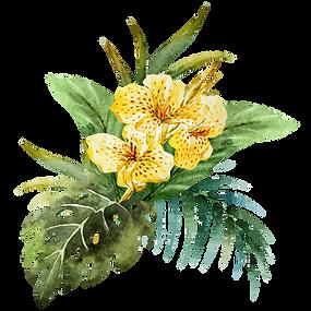Flower plant bouquet