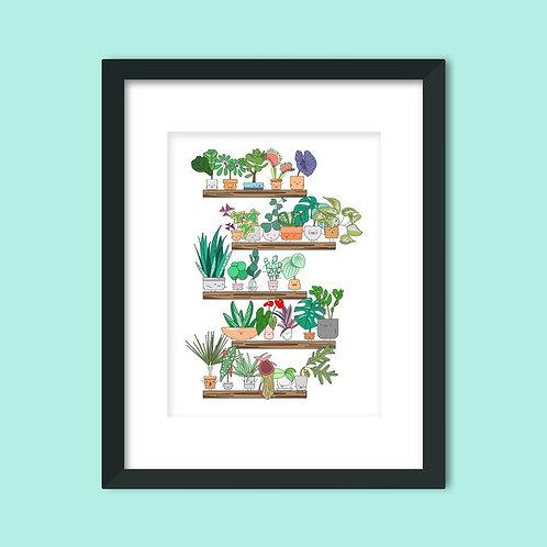 PLANT SHELFIE ART PRINT