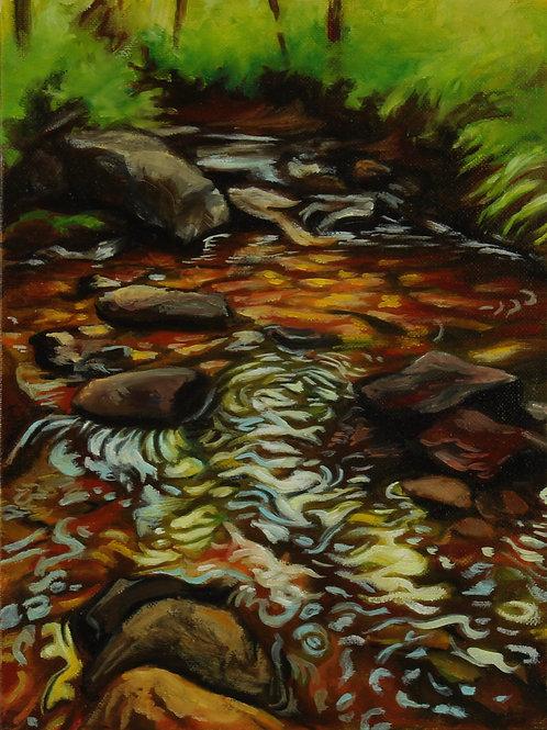 Summer Creek 1
