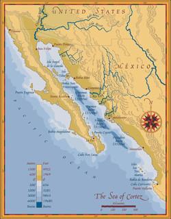 Baja California Sea of Cortez