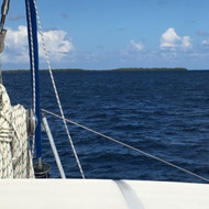 Afternoon Sail