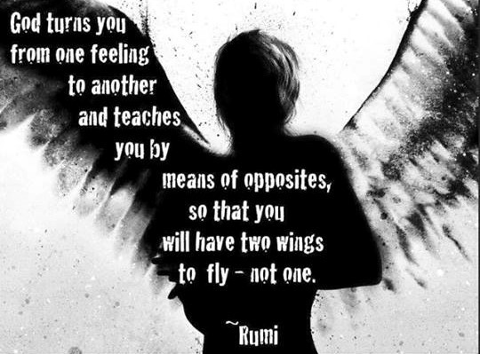 rumi - god turns you from one feeling to another....jpg