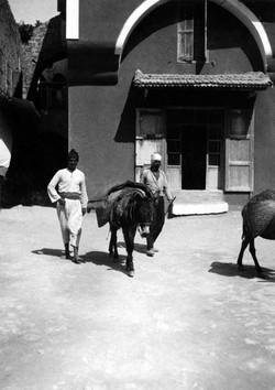 כיכר גנואה בשנת 1933