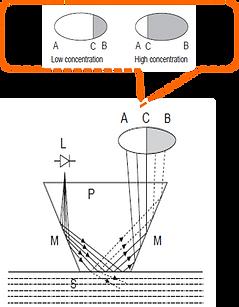 principle2.png