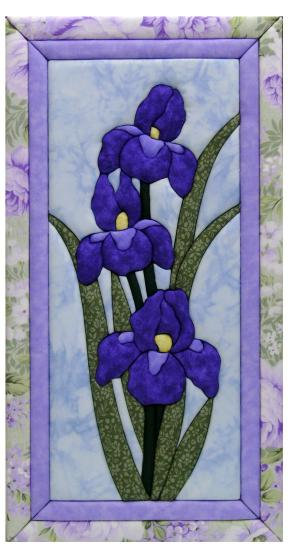 #500B-8 Irises