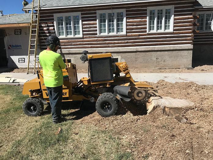 stump_grinding.jpg