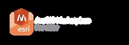 arcgis-marketplace-provider-revbig.png
