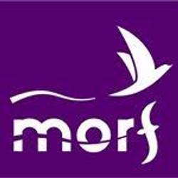 Let´s Morf