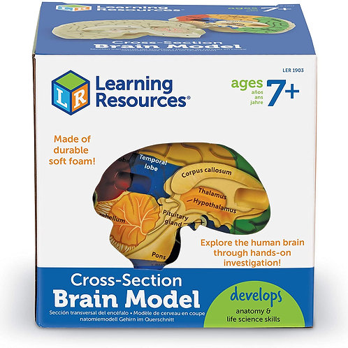 Learning Resources Cross-Section Models