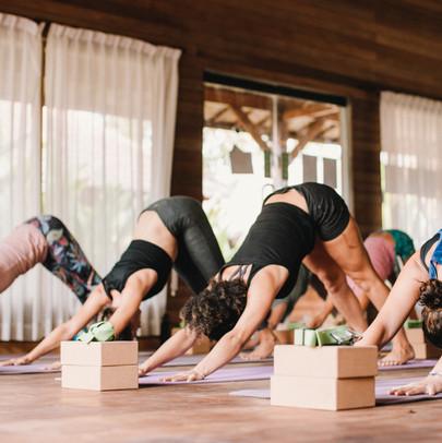 Formation de professeur de Yoga