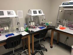 PCR room