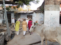 A Walk in the Jain Neighborhood