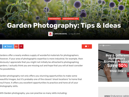 Garden Photography Tips & Ideas