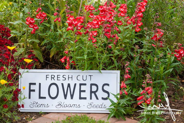 Garden flowers with flower sign