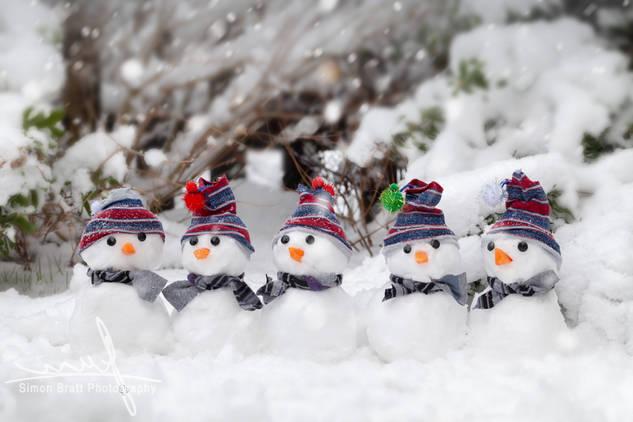 Five cute snowmen dressed for winter.jpg