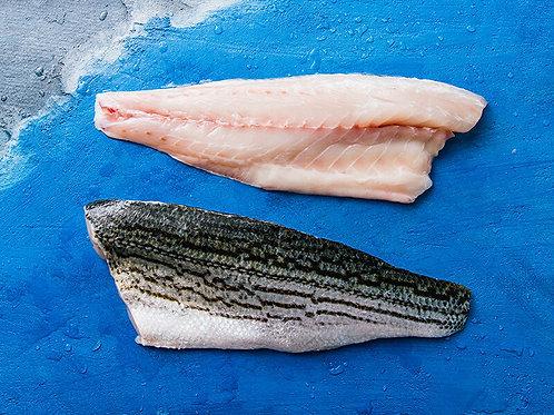 Ocean Striped Bass Fillet (INSTANT ORDER)