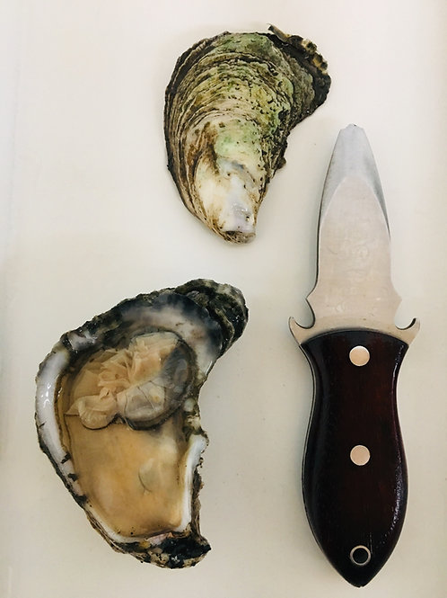 1/2 Bushel NC Stump Sound Oysters (PLACE ORDER)