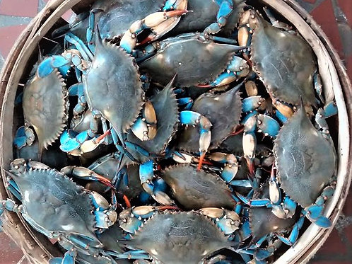 #3 Females 1/2 Bushel NC Live Blue Crabs (PLACE ORDER)