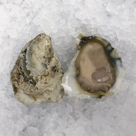 Whole Bushel NC Stump Sound Oysters (PLACE ORDER)