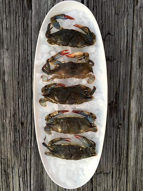 1 Case Frozen Small Soft Shell Crabs (PLACE ORDER)
