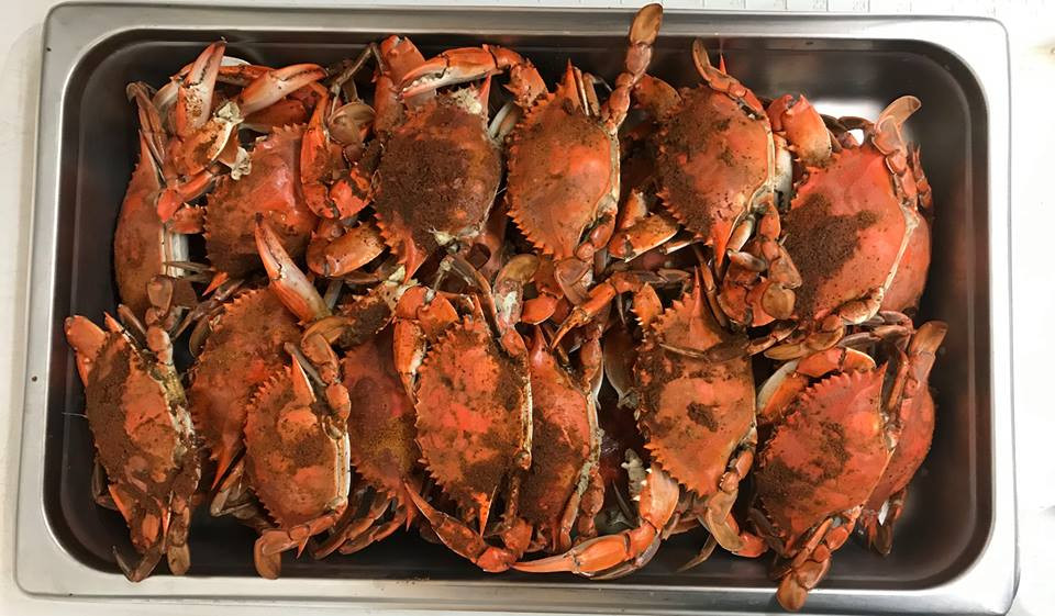 Steamed NC Blue Crabs