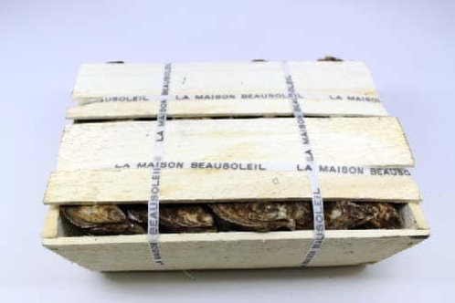 100 Ct Beausoleil Oysters (PLACE ORDER)