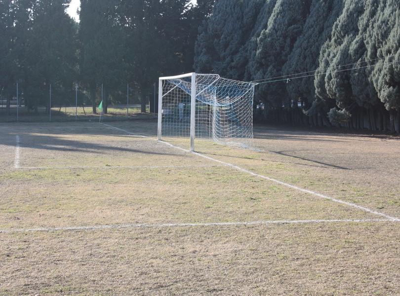 Campo in Erba Vanni