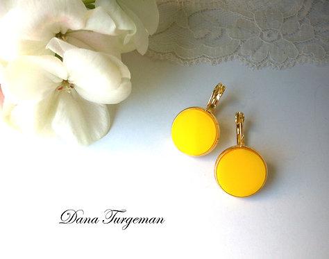 עגילים עגולים בצהוב / Round Plain Yellow Earrings