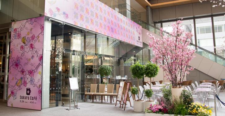 Sakura Cafe 2014