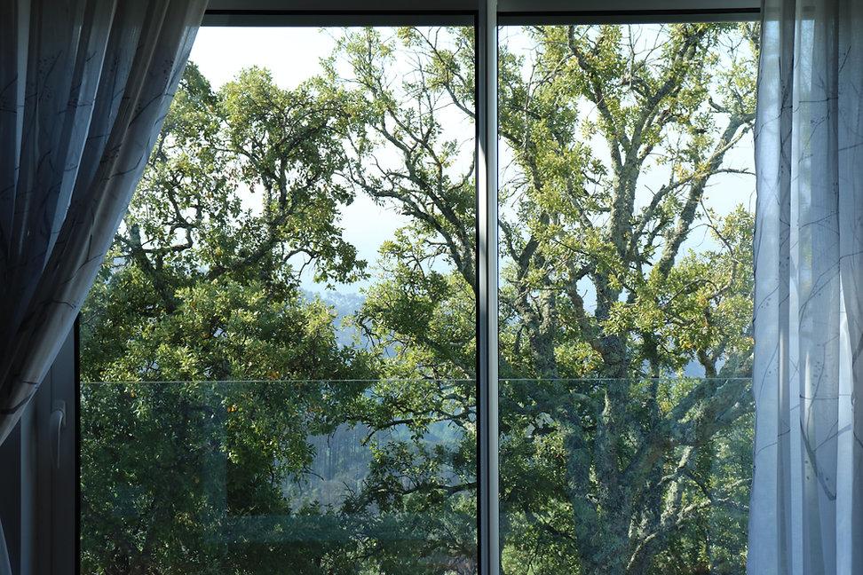 Suite View.JPG