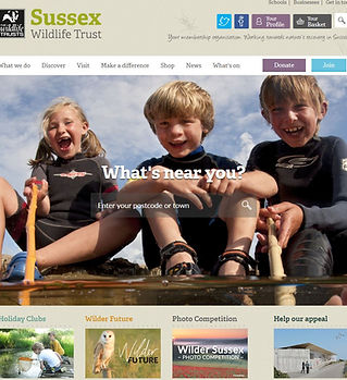 sussex wildlife trust