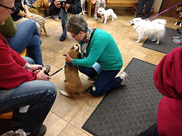 2017 Blessing of the Animals.jpg